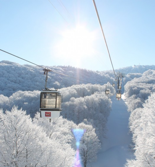 Nozawa Onsen - one of Asia's top 5 ski resorts