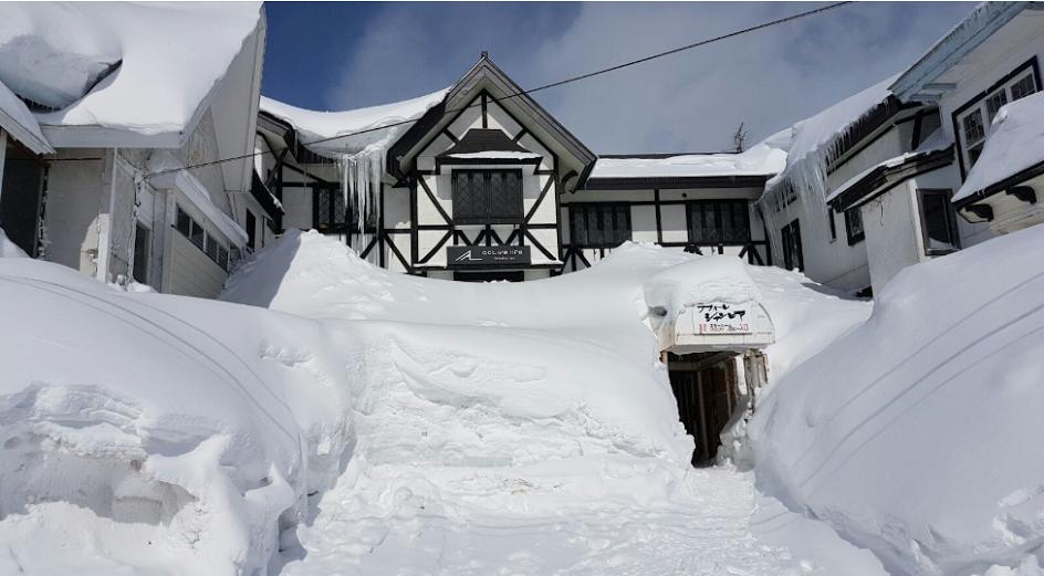 Le meilleur ski lodge / lodge au Japon - Active Life Madarao