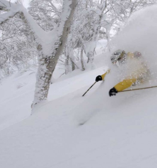 """Best Powder"" segment of 2015"