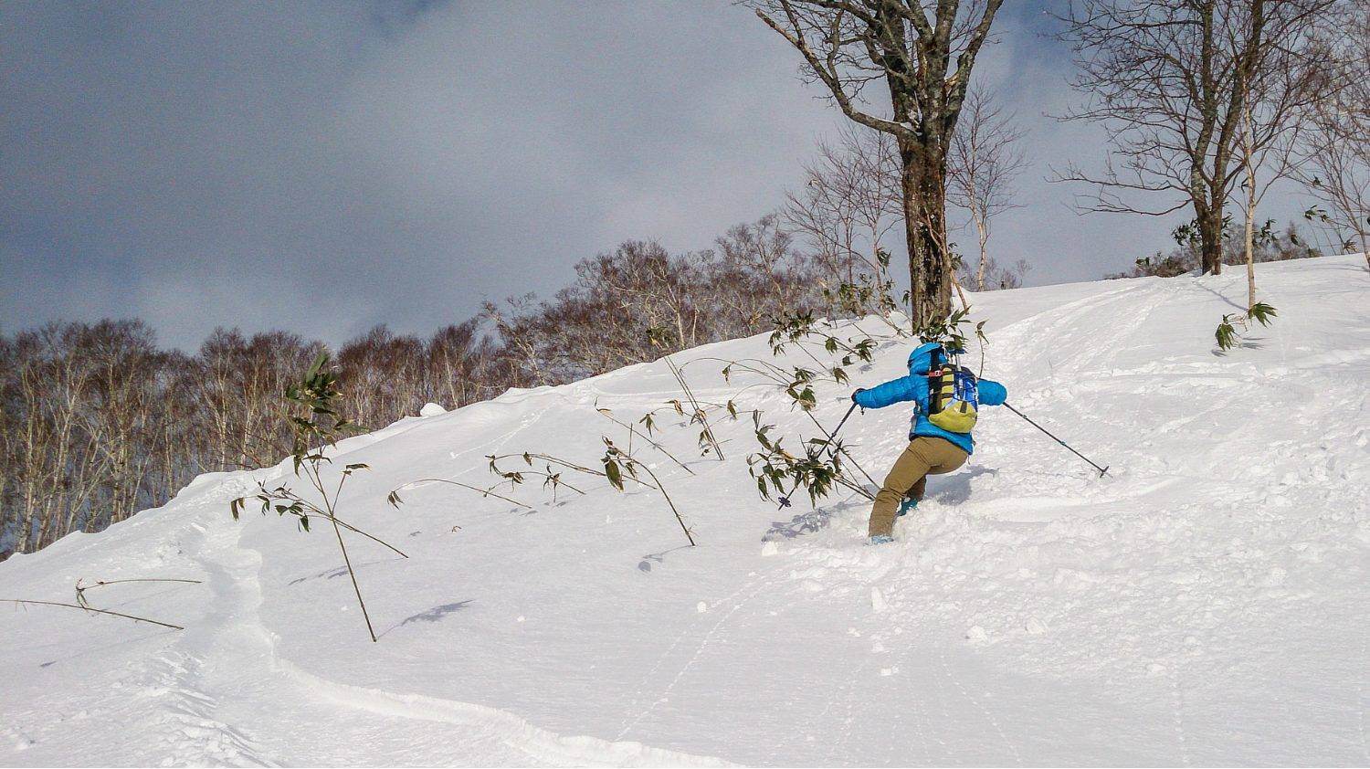 Chisenupuri backcountry cat skiing