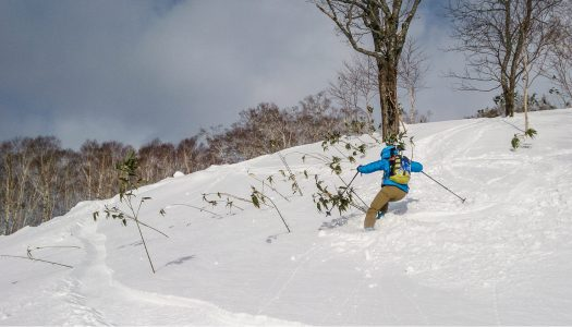 ¥2,000 cat skiing on its way to Niseko