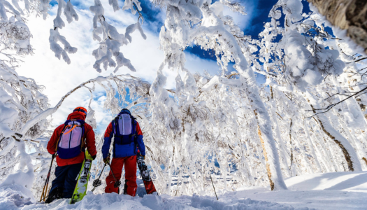 How to ski Japan on a budget