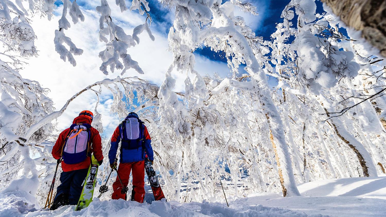 how to ski japan on a budget | ski asia
