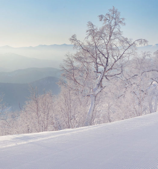 Tomamu, Japan's best family ski resort