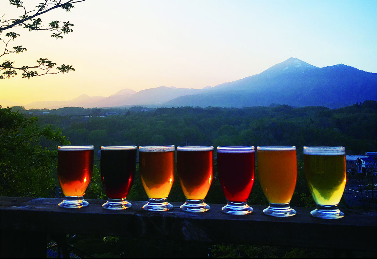 Niseko Brewing