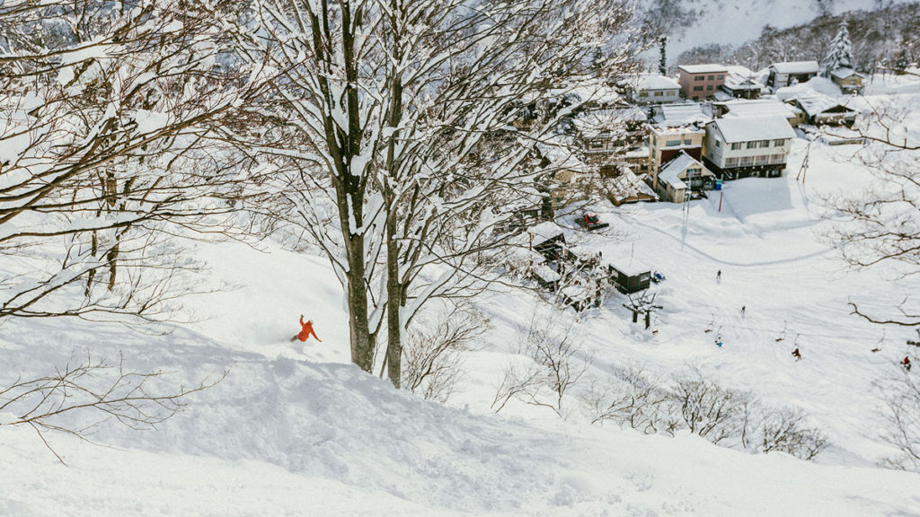 Snowboarding powder in Japan