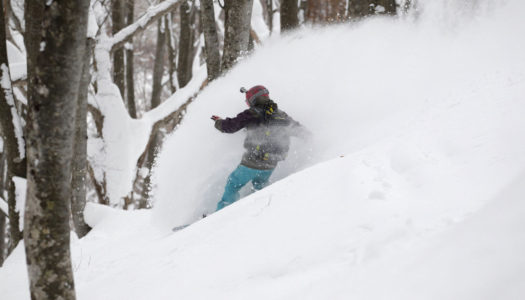 Japanese mountain associations urge skiers to stay out of the backcountry